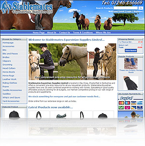 Self Maintained Websites and Ecommerce Websites